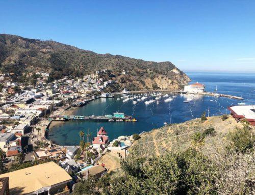 Exploring Catalina Islands